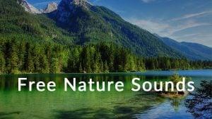 フリーで効果音が作成できるサイト「Free Nature Sounds」