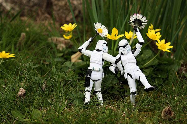 お花畑でるんるん
