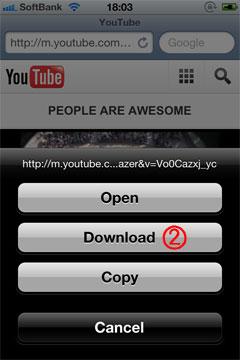 Downloadを選択