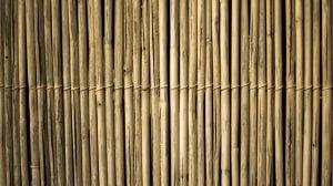 半年以上の時間をかけて作られる竹サックスへの思い