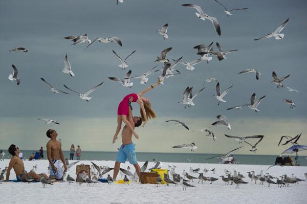 鳥達も喜ぶダンス