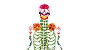押し花で作られた骸骨作品が面白い 押し花アート「flora」