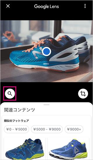 Google画像レンズの検索アイコン選択